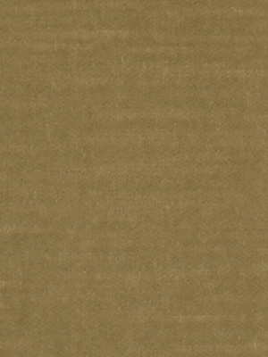 CONTENTMENT SAND DOLLAR