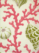 Sea Shell Branch Pink Sand