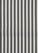 Ticking Stripe Chocolate