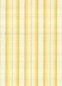 CANDY STRIPE LEMON TAF-581