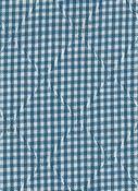 COUNTRY GINGHAM BLUE JAQ111