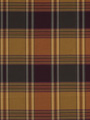 TULCAN PLAID JEWEL