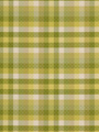 INVITING PLAID LIME