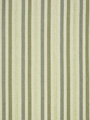TECHNO STRIPE BIRCH