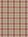 BRITE PLAID TULIP