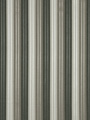 RADIANT STRIPE STEEL