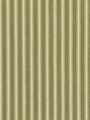 COTTAGE STRIPE GRASS