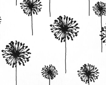 Dandelion White/Black